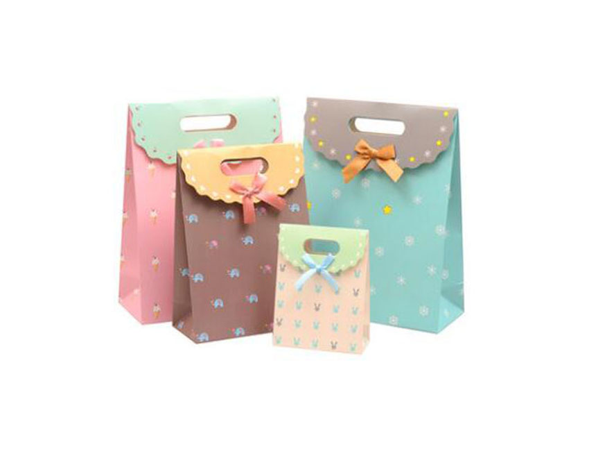 Boutique Shopping Gift Bags
